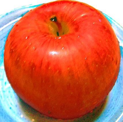 リンゴの水彩画 果物のイラスト素材 果物のイラスト素材  フリーイラスト/フ