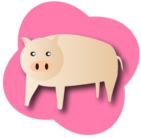 豚とピンクの背景つき