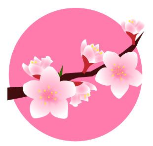 桃の花と桃色の背景