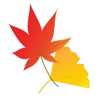 赤い紅葉と黄色の銀杏