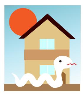 家の前をシロヘビが通る