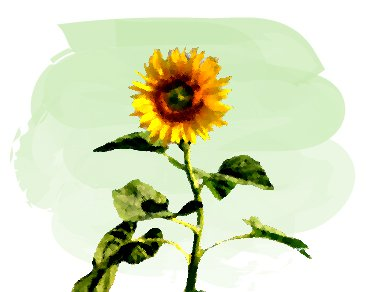 油絵風の向日葵