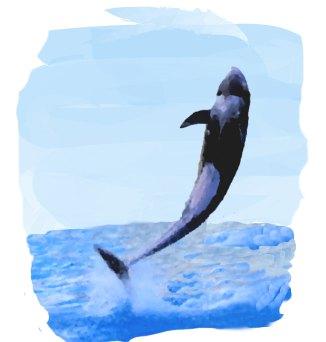 水しぶきを上げてジャンプするイルカと海