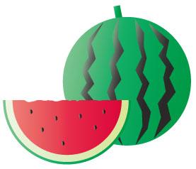 夏の食材の西瓜