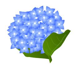 6月ごろに咲く花
