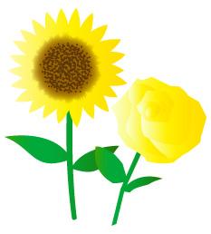 ひまわりAND黄色のバラ