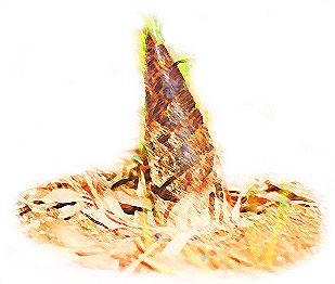 竹の子たけのこの無料イラスト
