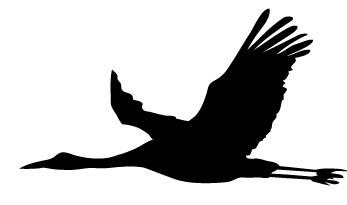 鶴(つる)の無料イラスト : 動物の影絵 : すべての講義