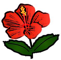 シンプル赤花