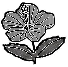 白黒シンプル