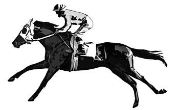 全力疾走する競走馬の白黒