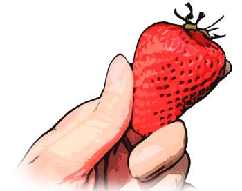 指でイチゴをつかむ
