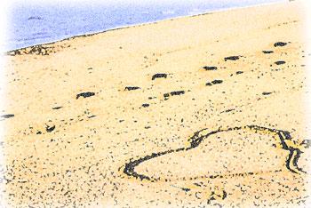 砂浜に書かれたハートマークと足跡
