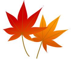 2枚の紅い葉