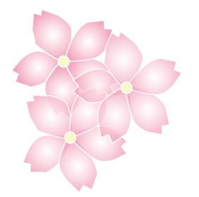 重なり合ったさくらの花びら