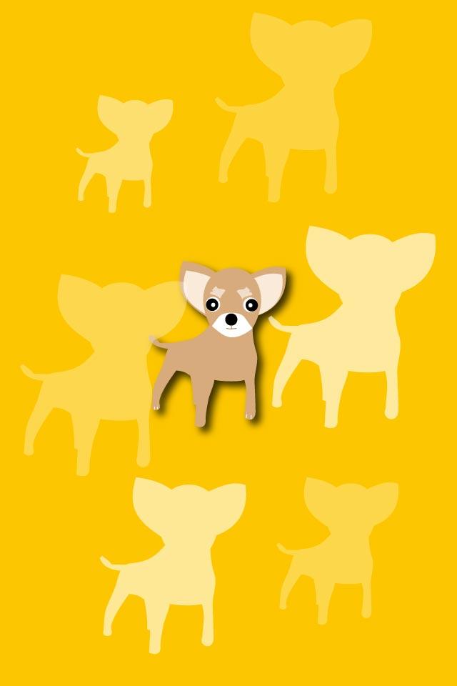 小型犬チワワのスマホ壁紙スマホ壁紙