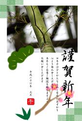 竹の写真入りの年賀状