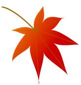 紅葉のイラスト素材