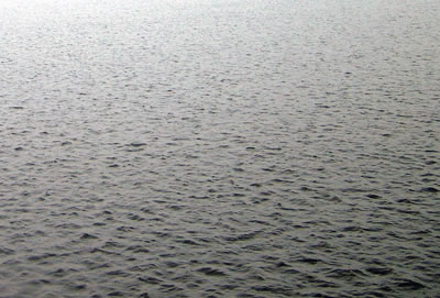 川の水面のの拡大写真