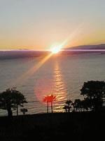 夕日と海とヤシの木の風景写真