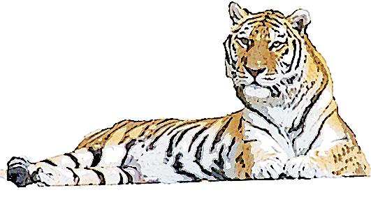 大きいサイズの座っている虎