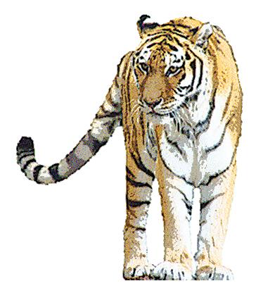 大きいサイズの虎の水彩画小