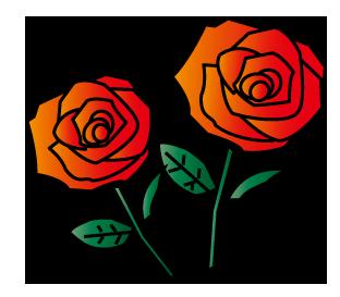 大きいサイズの2輪の赤い薔薇