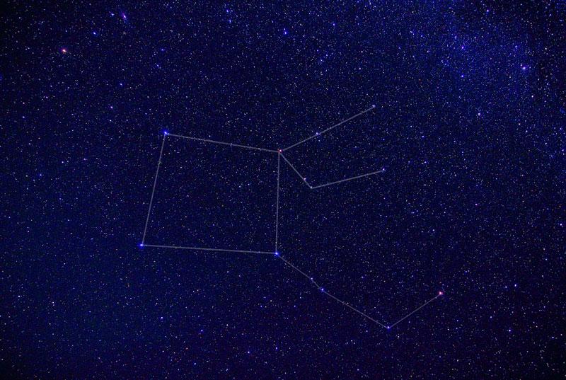 大きいサイズのペガスス座星図ラインあり