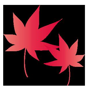 大きいサイズの赤一色の紅葉