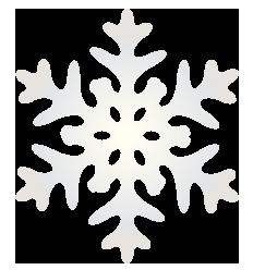 大きいサイズの光沢のある雪の結晶