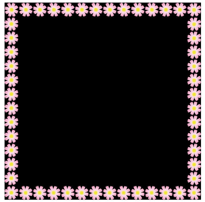 大きいサイズのコスモスの正方形の枠