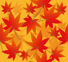たくさんの紅葉