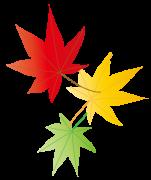 赤と黄色と緑の紅葉