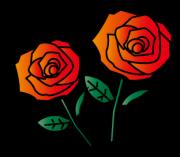 2輪の赤い薔薇