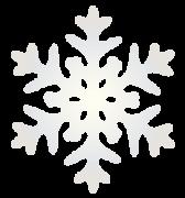 光沢のある雪の結晶