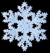 樹枝状の結晶