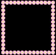コスモスの正方形の枠