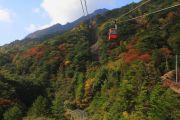 ロープウェイと色づき始めた秋山