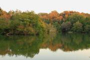 水面に映り込んだ紅葉
