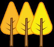 3色のイチョウの木