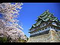 桜と名古屋城壁紙