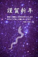 星空写真と白蛇の年賀状