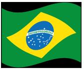 ブラジルの波打つ国旗